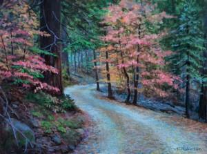 The road to Nelder